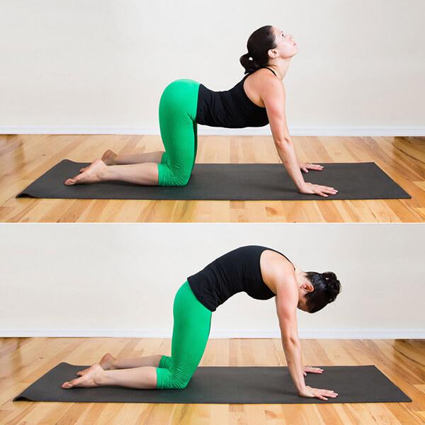 Bài tập yoga tốt cho cột sống