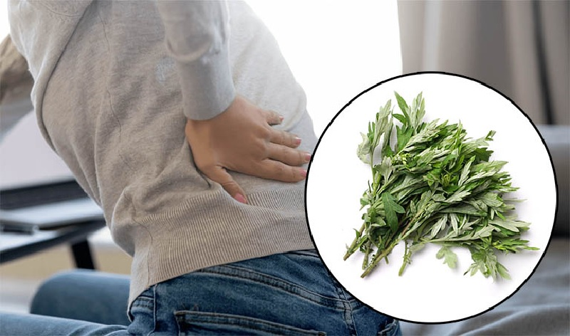 giảm đau lưng bằng ngảii cứu